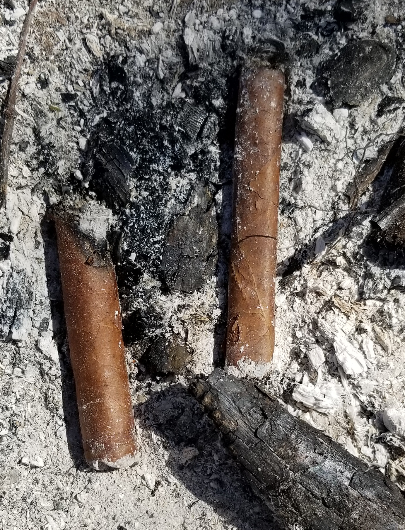 What Did You Smoke Today?  (Non-Habanos)-20190323_145923_1553371835574.jpg