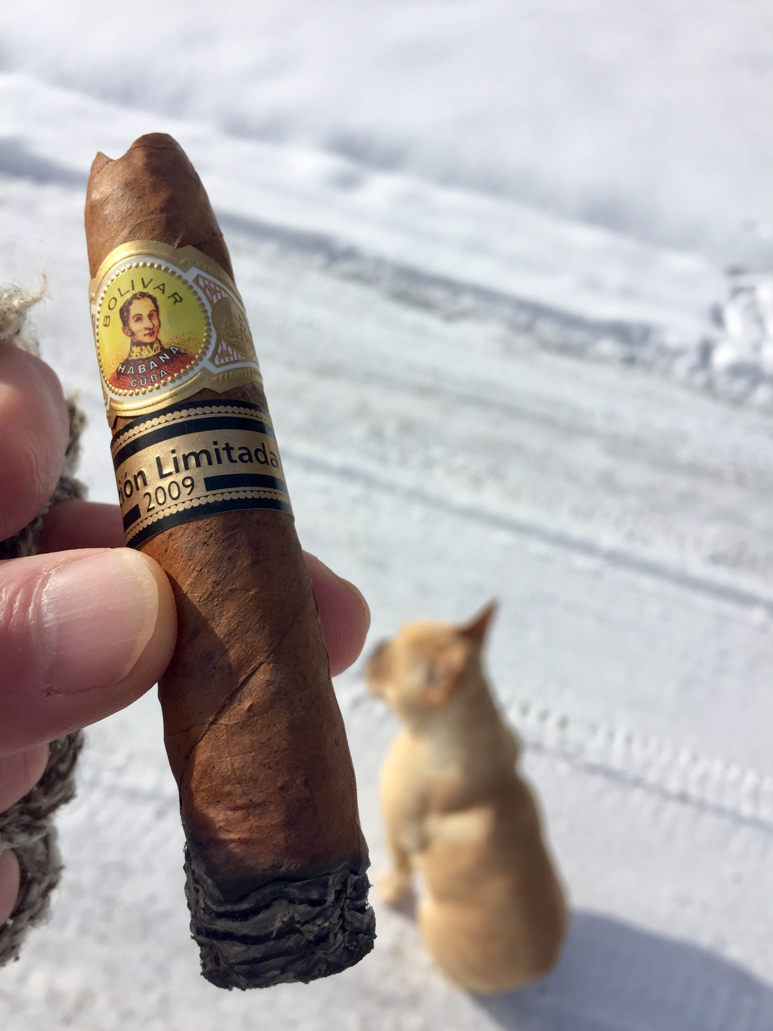 What did you smoke today?  HABANOS ONLY.-5c970015-0437-4d33-b8d4-7ac4302f37cf.jpg
